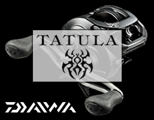 Daiwa Tatula Buy Now